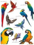 art-print-potolki-366242
