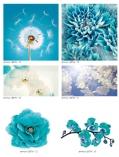 art-print-potolki-390052