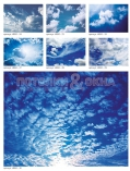 art-print-potolki-453502