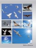 art-print-potolki-109936
