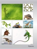 art-print-potolki-142203